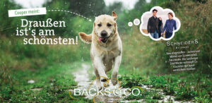 Hund Cooper